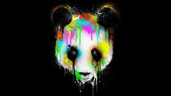 Обои Абстракция разноцветной панды