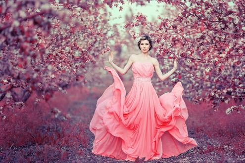 Обои Девушка в длинном розовом платье среди цветущих весенних деревьев, ву Sergey Shatskov