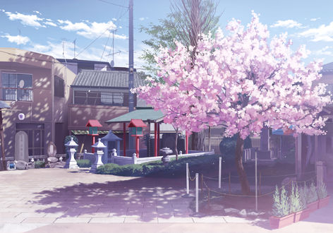Обои Цветущее дерево сакуры около домов