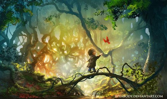 Обои Мужчина хоббит шагает по ветке дерева за красной птицей в лесу, художник jjpeabody