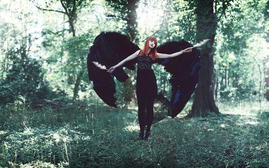 Обои Девушка с черными крыльями и с двумя перьями в руках стоит на фоне деревьев