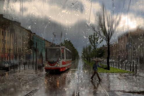 Обои Трамвай, идущий под сильным дождем, на переднем плане мужчина, держащий в руке зонтик, автор Эдуард Гордеев