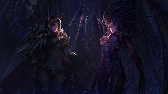 Обои Две темные эльфийки дроу