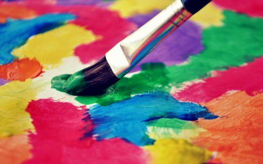 Обои Кисть среди разноцветных красок