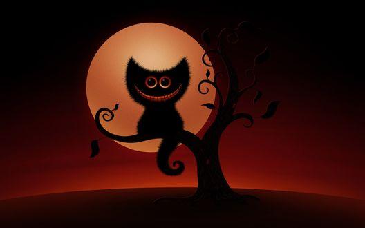Обои Чеширский кот ночью сидит на ветке дерева на фоне полной луны