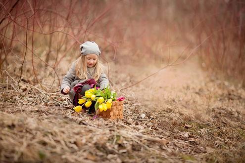 Обои Девочка, сидящая возле плетеной корзинки с желтыми, весенними тюльпанами