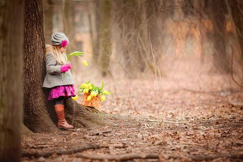 Обои Белокурая девочка, стоящая возле дерева, держащая в руке весенний, желтый тюльпан