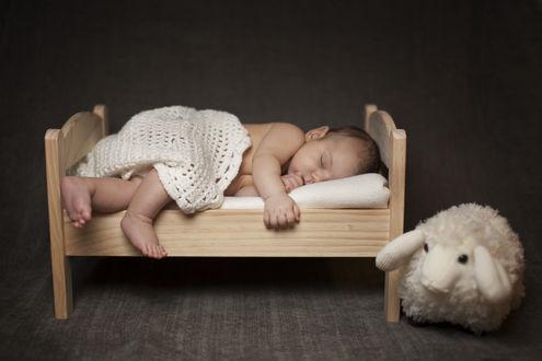 Обои Ребенок спит рядом с мягкой игрушкой
