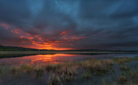 Обои Багряный закат над водоемом, берега которого покрыты густой осокой