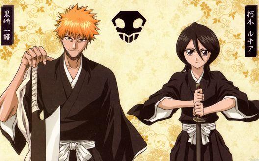 Обои Проводники душ / Shinigami Kurosaki Ichigo / Куросаки Ичиго и Kuchiki Rukia / Кучики Рукиа из аниме Bleach / Блич со своими мечами, на фоне растительного узора