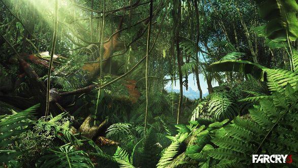 Обои Упавший много лет назад самолет в зарослях джунглей, из игры Far Cry 3