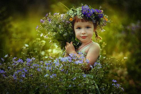 Обои Милая, рыжеволосая девочка с косичками, с венком на голове из полевых цветов, автор Наталия Законова