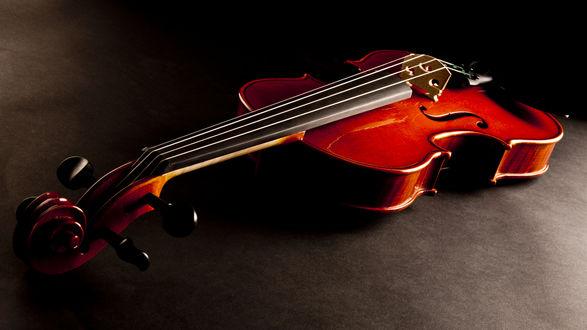 Обои Деревянная скрипка, игра света и тени