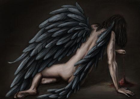 Обои Черный ангел и багровый песок, by Maylar