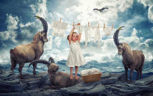 Обои Горные козлы помогают маленькой девочке развешать выстиранную одежду