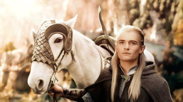 Обои Принц Леголас / Legolas с белым конем, персонаж фильма Властелин колец / Lord of the Rings