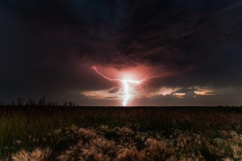 Обои Сверкающие разряды молний на темном небосклоне с грозовыми облаками над полем с колосьями травы, колышущимися от порывов ветра