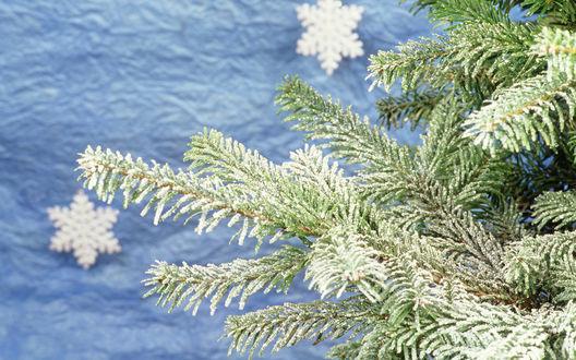 Glittery mountain snowflake nat 403