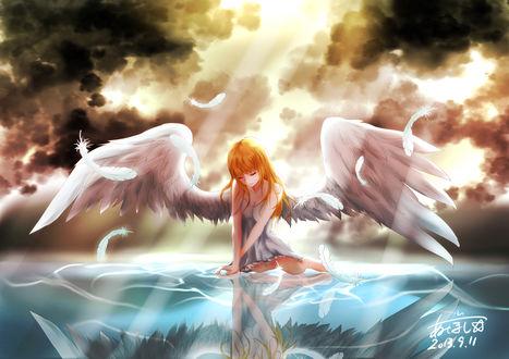 Обои Девушка-ангел сидит на поверхности воды