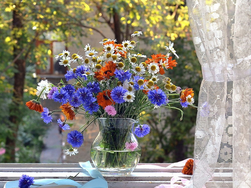 Ваза с полевыми цветами на окне