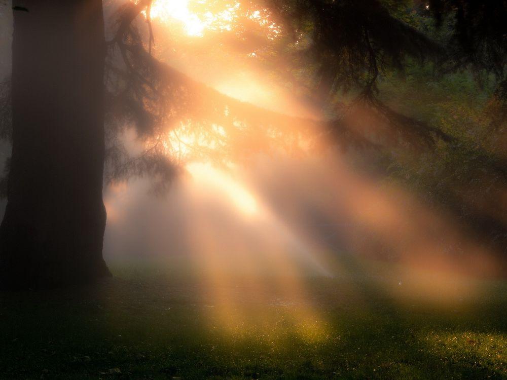 вот новом как сфотографировать лучи света кипятком