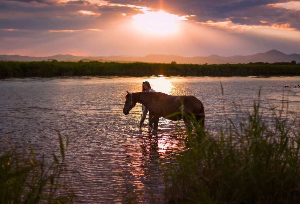 биополе озеро конь в картинках дело