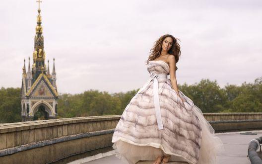 Обои Певица Leona Lewis / Леона Льюис в пышном платье