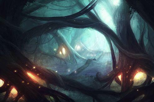 Обои Огоньки внутри деревьев