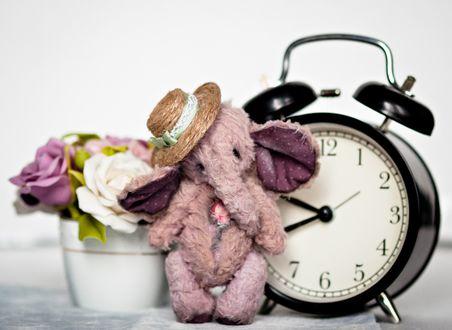 Обои Игрушечный розовый слоник стоит рядом с горшком с цветами и будильником
