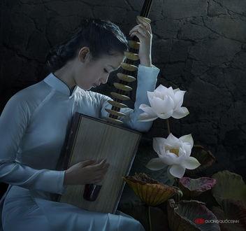 Обои Темноволосая девушка азиатской внешности, играющая на струнном инструменте возле цветущих белых лотосов, автор Duong Quoc Dinh