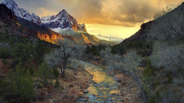 Обои Вид на горы с заснеженными вершинами, речку и лес, национальный парк Зайон США в штате Юта / Zion National Park, Utah, USA