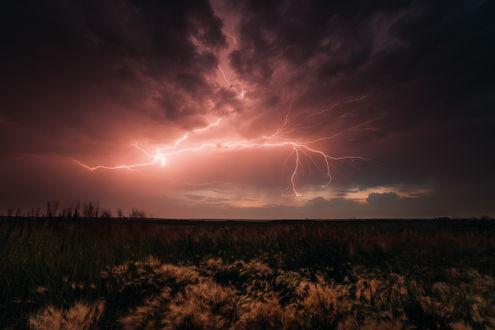 Обои Разряды молний на темном, грозовом небосклоне над травяным полем