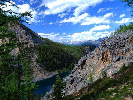 Обои Озеро Льюис / Lake Louise посреди скалистых гор, поросших хвойными деревьями, Национальный парк Банф, Канада / Banff National Park, Canada