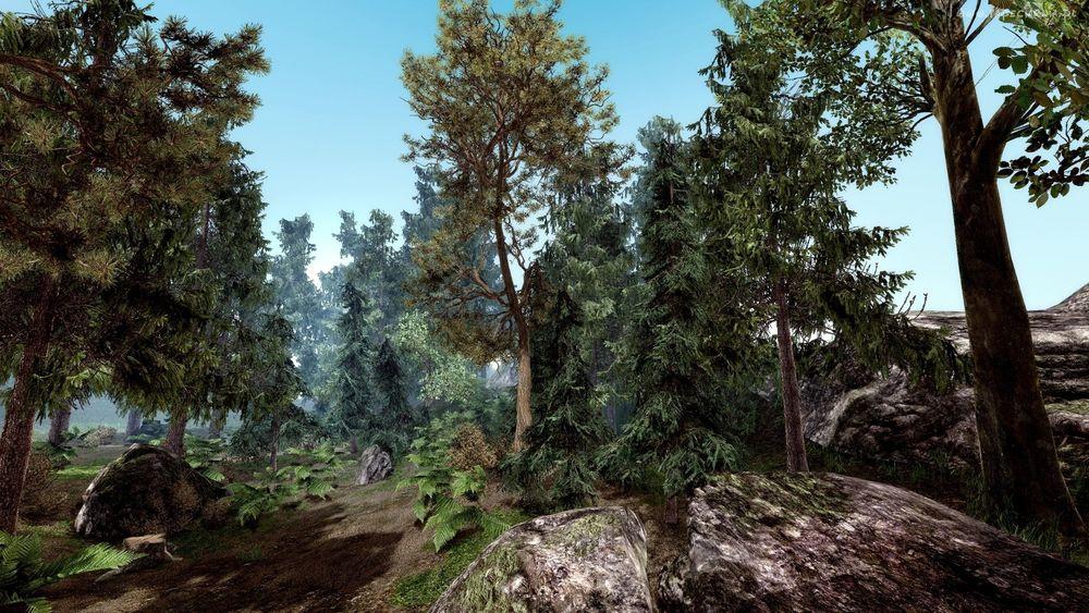 Обои для рабочего стола Густой лес, компьютерная игра Gothic 2 / Готика 2