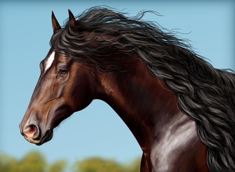 картинки голов коней значит