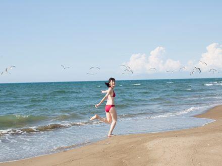 Обои Японская певица, участница группы C-ute, Яджима Майми / Yajima Maimi одетая в красный бикини бежит по береговой линии моря, а небе летают чайки