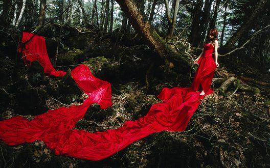 Обои Японская певица, участница группы Morning Musume, Гото Маки / Goto Maki стоит в лесу в красном платье с длинным шлейом