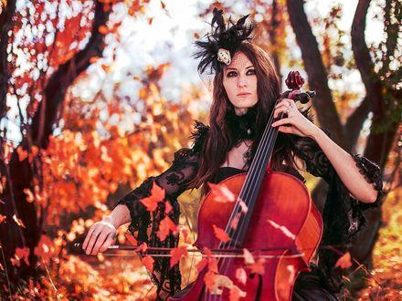 Обои Девушка играет на виолончели в осеннем лесу