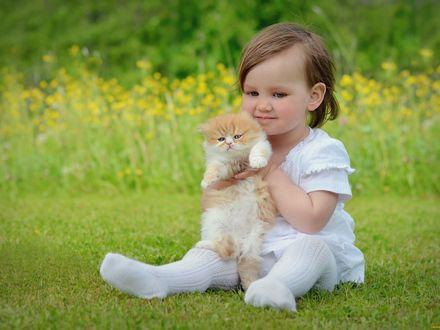Обои Девочка сидит на траве и держит в руках котенка