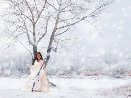 Обои Девушка играет на виолончели в зимнем лесу