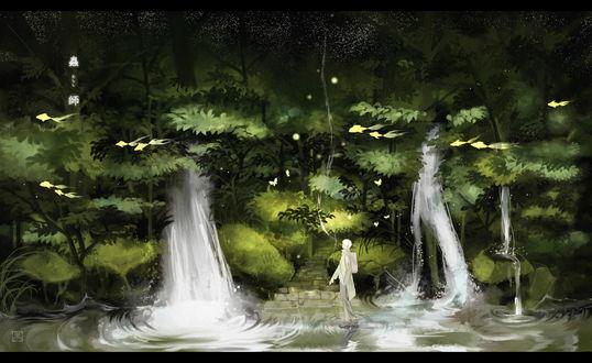 Обои Гинко-сан / Ginko-san из аниме Mushishi / Мастер Муши