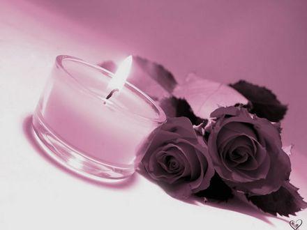 Обои Две розы лежат у горящей свечи