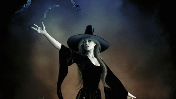 Обои Ведьма с летучими мышами