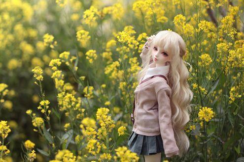 Обои Светловолосая девушка кукла с зелеными глазами около большого количества желтых цветов