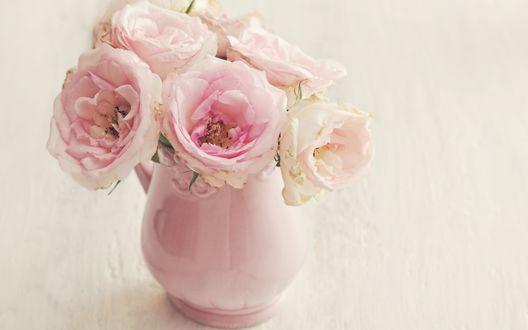 Обои Нежно-розовые розы в нежно-розовой вазе