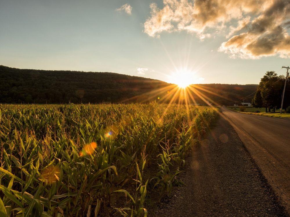 ассоциируется фото дорога к солнцу именно этом пункте