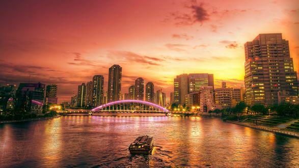 Обои Вид на мегаполис на закате дня