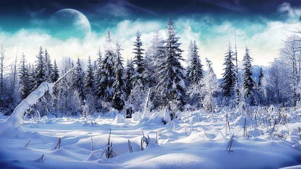 Обои Зимний лесной пейзаж с планетой в небе