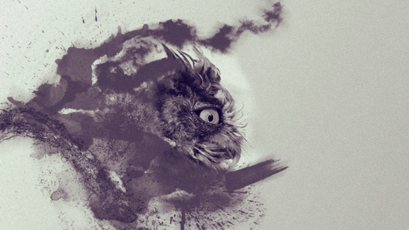 Обои Абстрактное изображение совы