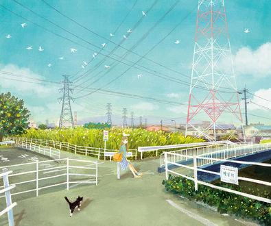 Обои Девушка с птицей на голове сидит на перекрестке, по направлению к ней идет кошка
